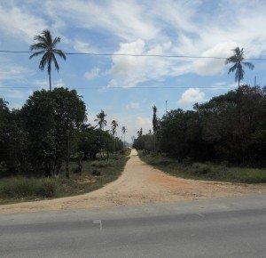 Ilha de Itamaracá dscn0808-300x290